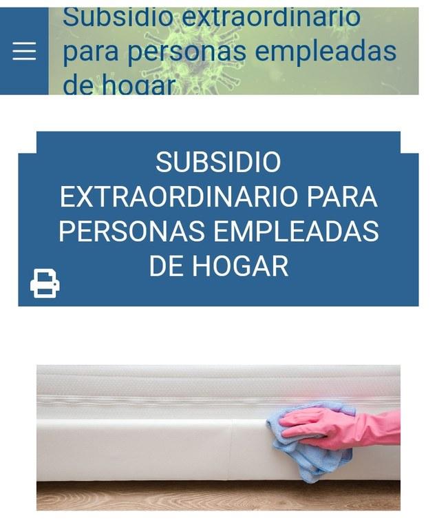 Subsidio trabajadoras del hogar