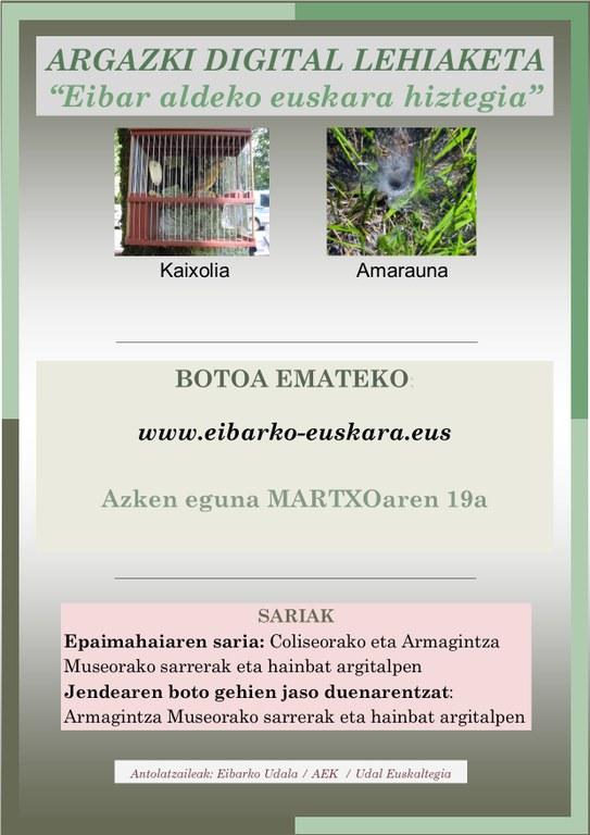 """Argazki digital lehiaketa """"Eibar aldeko euskara hiztegia"""", eman botoa"""